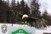 Футбол - ППЛ - Първа 6 -ца / 2 ри кръг - ПФК Лудогорец - ПФК Левски - 14.04.2017