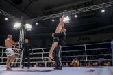 ММА и К1  GRAND FIGHT ARENA  - 01.12.2018