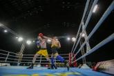 Нациолнална Боксова Лига - ЕФБЕТ - 14.12.2018